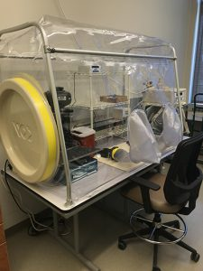 A chamber enclosed in plastic to control environmental factors